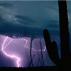 Blue and purple cloudy sky with lightning in background and cactus in foreground.