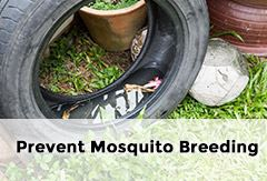 Prevent mosquito breeding